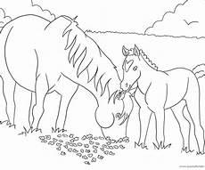 pferdebilder ausmalen ausmalbilder pferde viele