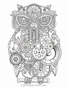 free printable steunk owl adult coloring page download