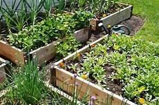 hochbeete selber bauen und bepflanzen understanding container gardening vegetable gardening news