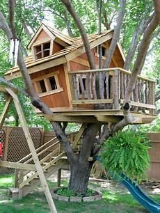 baumhaus garten kinder die besten 25 baumhaus bauen ideen auf