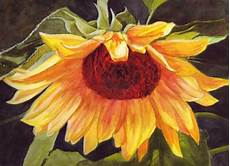 bunny s artwork sunflower watercolor painting