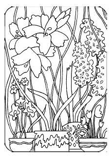 Malvorlagen Urwald Name Urwald Ausmalbild Malvorlage Blumen