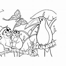 free coloring pages of animals in the rainforest 17397 simple tropical rainforest coloring page coloring pages