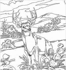 free printable coloring pages of animals 17369 ausmalbilder haustiere zum ausdrucken