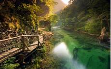 Nature Path 4k Wallpaper by Nature Landscape River Walkway Mountain Path Forest