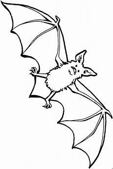 Fledermaus Malvorlagen Tiere Aengstliche Fledermaus 2 Ausmalbild Malvorlage Tiere