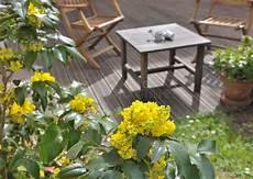 terrazzo fiorito tutto l anno terrazzo fiorito fotografia stock immagine di terrazzo