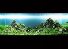 amano aquascape takashi amano kusuyama
