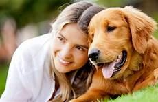 famille d accueil pour chien pendant les vacances une famille d accueil pour votre chien pendant votre absence