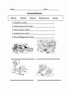 animal habitat worksheets for 3rd grade 13892 animal habitats with images animal habitats habitats activities