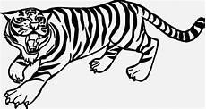 tiger malvorlagen bilder zum ausmalen bekommen tiger