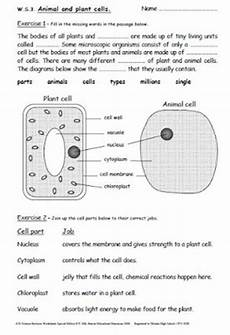 iman s home school key stage 3 science revision worksheets years 7 9