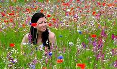How To Create Your Own Wildflower Meadow Or Patch Garden