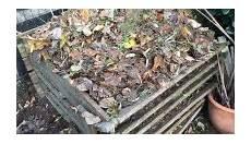 was darf auf den kompost garten freunde die besten tipps f 252 r einen sch 246 nen garten