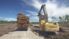 de bois chargeuse et camion de transport de bois en longueur