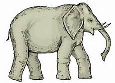 Malvorlagen Elefant Pdf Ausmalbilder Elefanten Ausdrucken