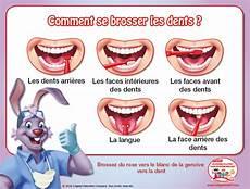 initier vos enfants au brossage des dents activit 233 s pour