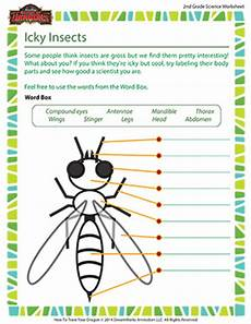 grade 3 science worksheets insects 12532 icky insects 2nd grade science worksheets sod