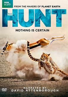 the hunt dvd best buy