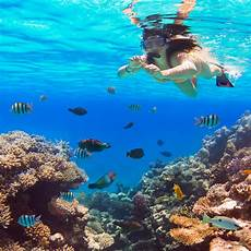 visiting oahu for snorkeling 3 interesting facts about hanauma bay snorkelfest snorkel