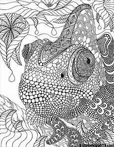 Malvorlagen Tiere Schwer Die Besten 25 Mandala Tiere Schwer Ideen Auf