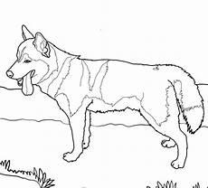 Ausmalbilder Hunde Husky Ausmalbilder Hunde Husky X13 Ein Bild Zeichnen