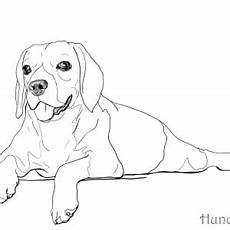 Malvorlage Liegender Hund Ausmalbilder Mit Hunden Hunde