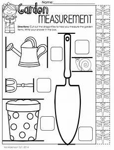 plants measurement worksheets 13586 141 best math measurement images on measurement activities math measurement and