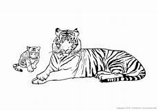 Ausmalbilder Regenwald Tiere Kostenlose Tierbilder Zum Ausmalen Ausmalbilder