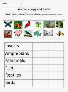 science worksheets on classification 12333 sc 3 l 15 1 classify animals into major groups mammals birds reptiles hibians fish