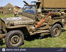 Jeep Willys Stock Photos & Images  Alamy
