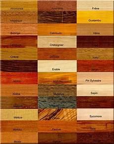 bois le plus dur essences de bois et usages lumber wood veneer myo