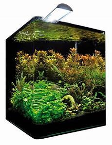 nano aquarium 30l dennerle nano cube complete plus 30l