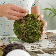 Mooskugeln Selber Machen Basteln Mit Naturmaterialien