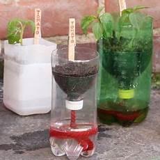 pflanzen bewässern mit plastikflasche mit diesen selbstbew 228 ssernden anzucht t 246 pfen aus plastikflaschen gedeiht jede pflanze
