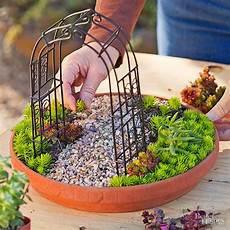 Do It Yourself Ideen Garten - diy miniature succulent garden do it yourself ideas and