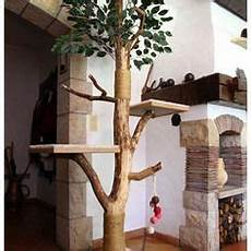 arbre a chat design arbre 224 chat design en ch 234 ne veritable arbre 224 chat