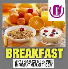 nwg works why breakfast is the most important meal of the day nutalk