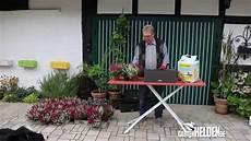 Blumenkübel Winterfest Machen - blumenk 228 sten f 252 r herbst und winter gartenhelden