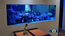 aquarium als raumtrenner aqua tropica referenz aquarium raumteiler