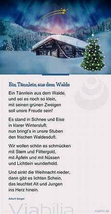 weihnachtsgedicht ein t 228 nnlein aus dem walde