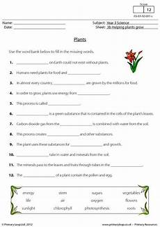 science worksheets plants grade 3 12350 90 best images about sci grade 3 on eyfs photosynthesis and anchor charts