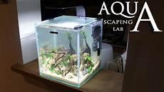 aquascaping lab tutorial nano cube aquarium size 20 x