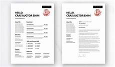 fre resume templates adobe indesign 10 free professional adobe indesign resume templates