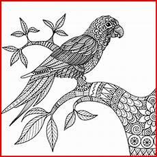 ausmalbilder kostenlos zum ausdrucken papageien ausmalbilder mandala papagei fur erwachsene rooms