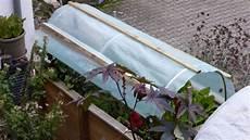 minibar selbst bauen vom hochbeet zum mini gew 228 chshaus dach selber bauen