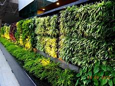 verticle gardening agro wall vertical garden planting system agro wall vertical garden for interior and exterior