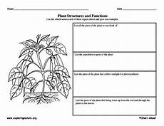 17 best images about outdoor worksheets printables on pinterest nature hunt activities and