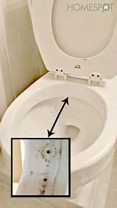 Wie Entfernt Urinstein Die Besten Tricks Saubere
