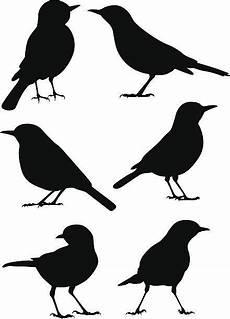 birds stock vektoren und grafiken vogel silhouette